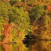AL GUNTERSVILLE LAKE GUNTERSVILLE STATE PARK LAKE GUNTERSVILLE TOWN CREEK OCTJJ_MG_8186MbmmW