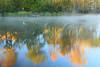 AL GUNTERSVILLE LAKE GUNTERSVILLE STATE PARK LAKE GUNTERSVILLE OCTJJ_MG_7497MbmmW