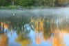 AL GUNTERSVILLE LAKE GUNTERSVILLE STATE PARK LAKE GUNTERSVILLE OCTJJ_MG_7491MbmmW
