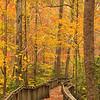 AL FORT PAYNE DESOTO STATE PARK TALMADGE BUTLER BOARDWALK TRAIL AZALEA CASCADE TRAIL OCTJJ_MG_5198MbmmW