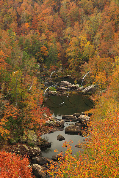 AL FORT PAYNE LITTLE RIVER CANYON NATIONAL PRESERVE CANYON VIEW OVERLOOK OCTJJ_MG_6028MbmmW
