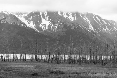 Along the Anchorage-Seward Rd