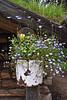 flowerpot1078