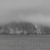 Had a hard time getting the fog images to represent correctly so opted to show them as b/w, which I feel <br /> did them more justice.