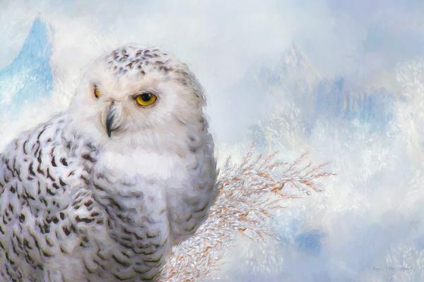 4241-TL-0409   Snowy Luster