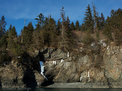 Frozen water runoff and small waterfall along Kachemak Bay