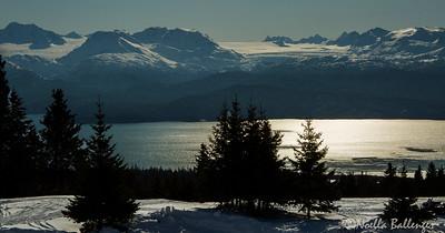 Kachemak Bay, Homer Alaska