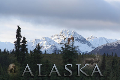 Trains Ride to  Talkeetna, Denali and Fairbanks