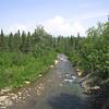 Hatcher Pass July 09 008