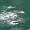 July Denali Trip 10 343