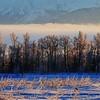 Wasilla December 062