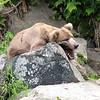 July Denali Trip 10 182
