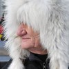 Iditarod 2009 006