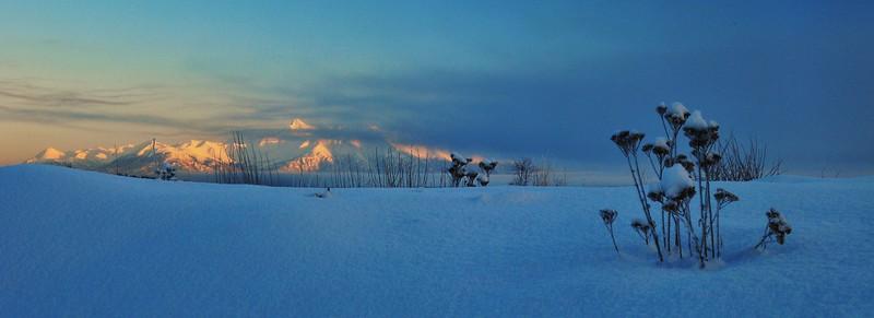 Wasilla December 084