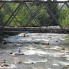 Hatcher Pass July 09 026