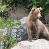 July Denali Trip 10 176