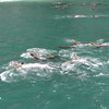 July Denali Trip 10 304