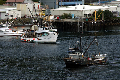 Ketchikan, Alaska harbor where fishing is business