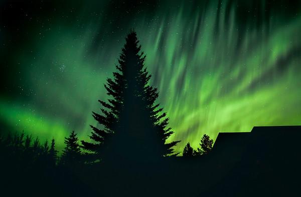 Backyard Northern Lights