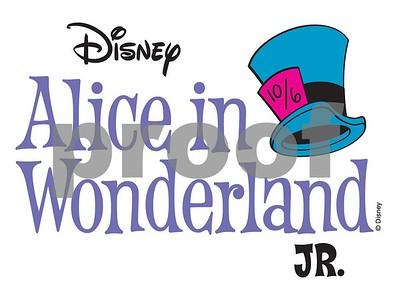 ALICE IN WONDERLAND - 2016