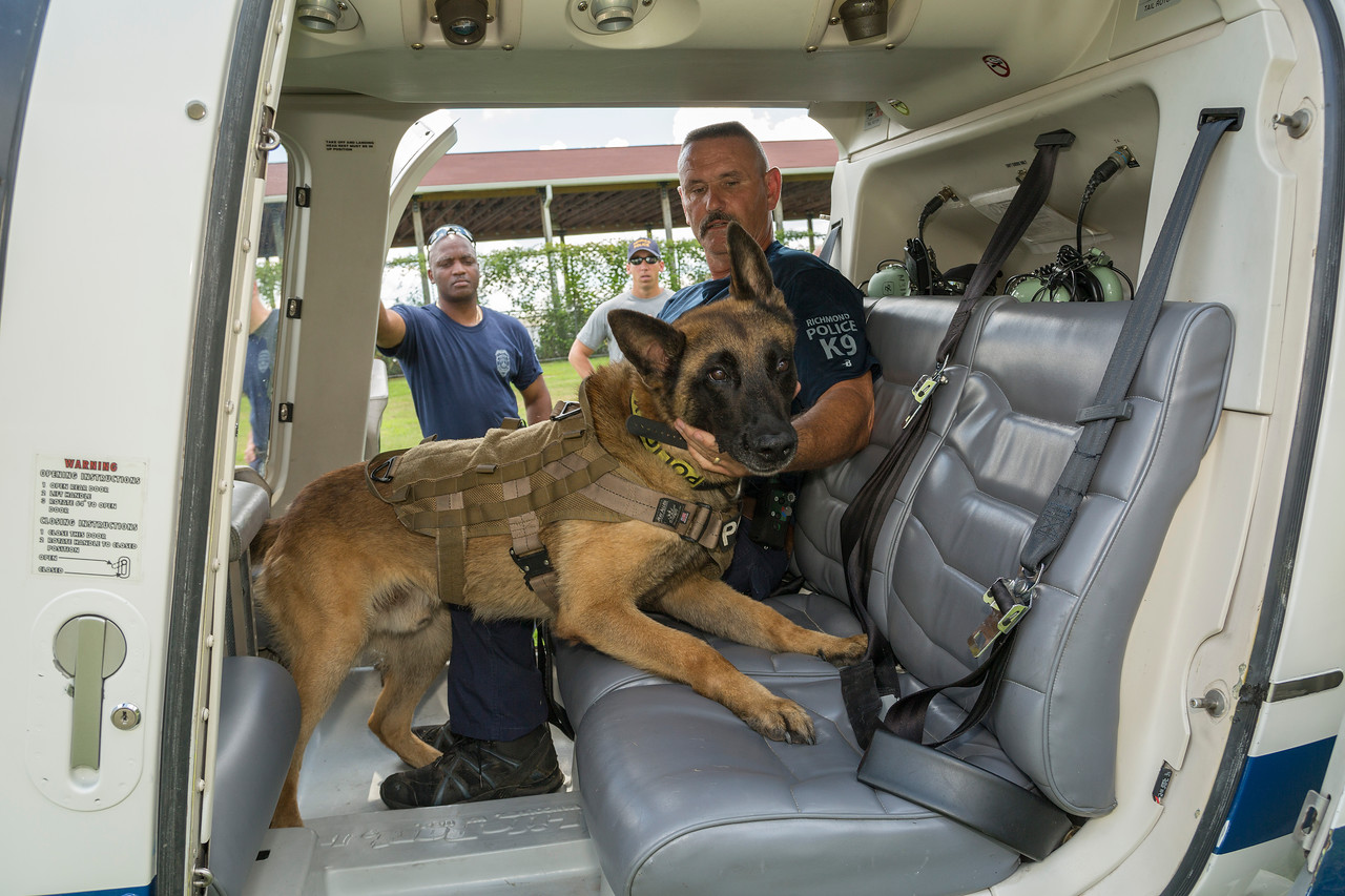k9training_helo_GA8A4941
