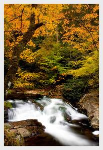 River Road Falls