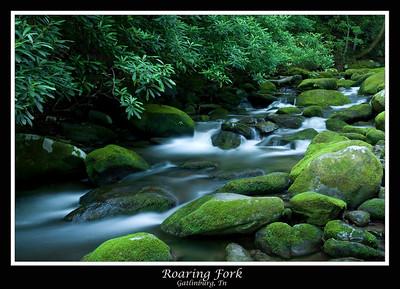 Mountain Creek, Roaring Fork
