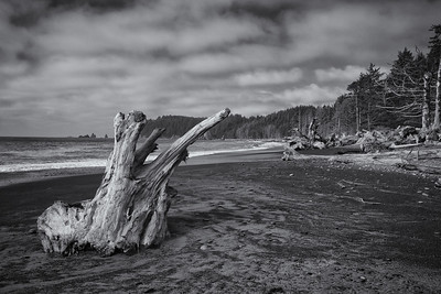 Washington Coast two