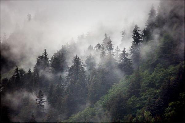 Alaskan Fog