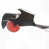 Magnificent Frigatebird-6