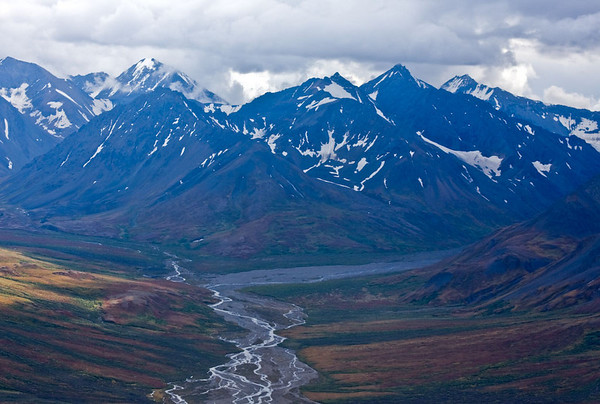 Braided River beneath the Alaska Range
