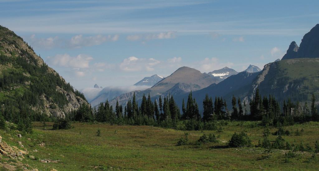 Along Hidden Lake trail, Glacier NP