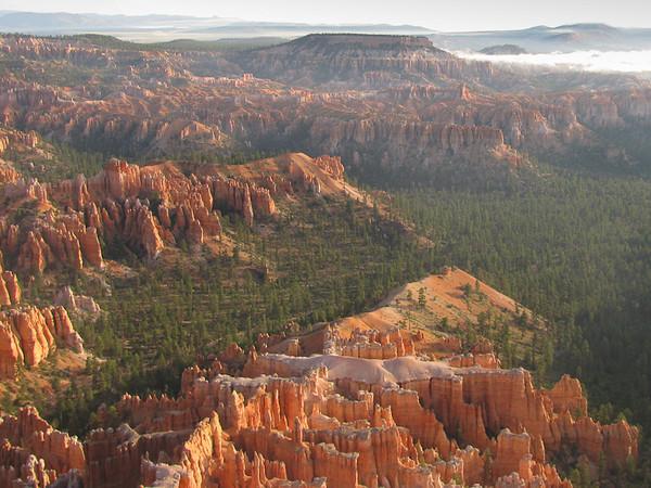 Bryce Landscape
