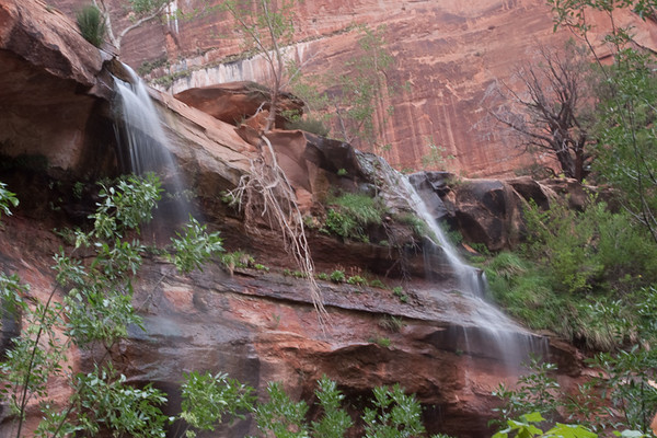 Middle Emerald Pool<br /> Zion National Park