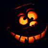 Crazy Pumpkin Cat