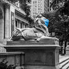 NYPL- Patience and Fortitude