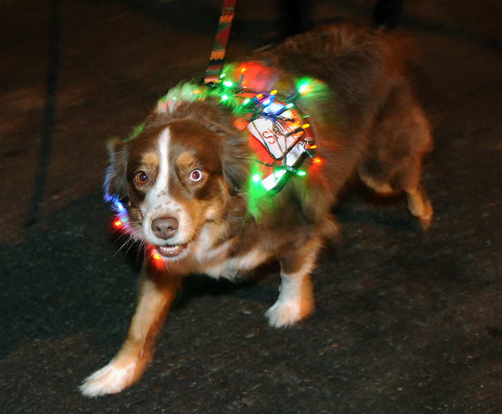 20111210_HOLIDAY_LIGHTS_PARADE_10