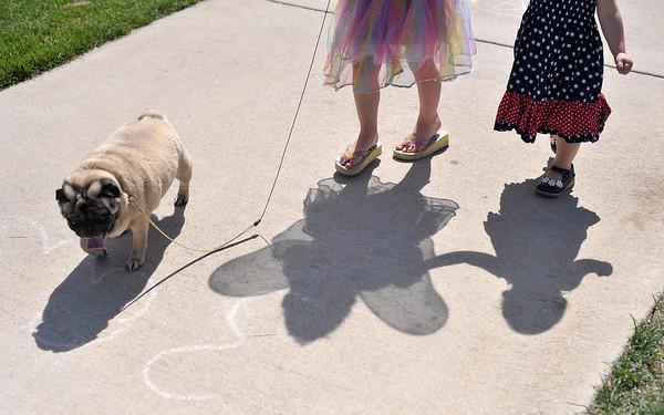 20110618 Pet Doll Parade1