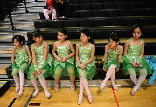 Dancers from the Bohua Chinese School watch a performance during the Longmont Chinese New Year Celebration Saturday Feb. 23, 2013 at Silver Creek High School. 2013 is the Year of the Water Snake, the snake is the sixth of twelve zodiac animal designations in the Chinese calendar. The event was sponsored by the Asian-Pacific Association of Longmont. (Lewis Geyer/Times-Call)
