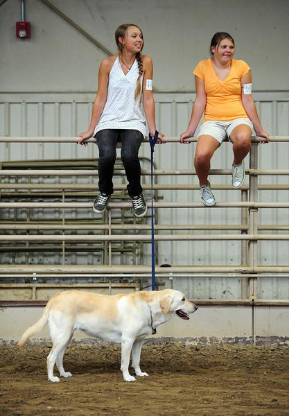 20110801_RMH_FAIR_4-H_DOG_SHOW