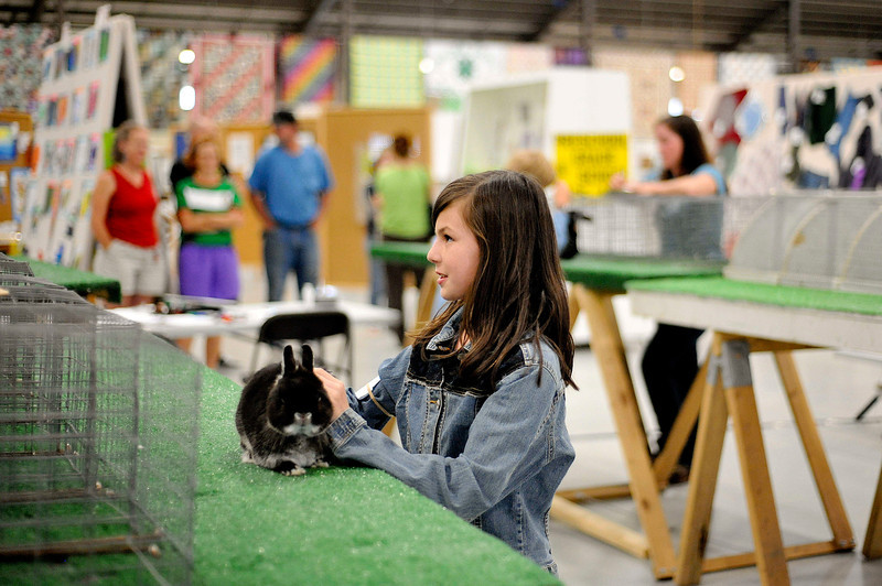20100803_FAIR_RABBITS_5