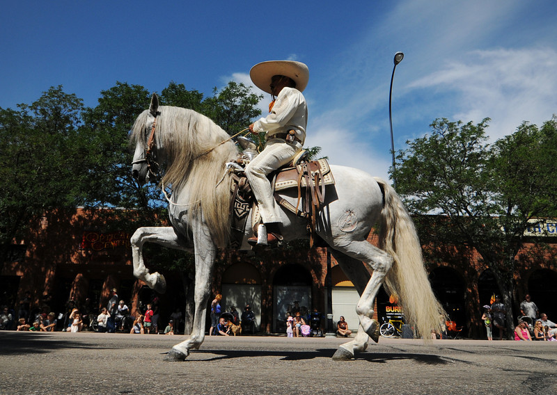 A Mexican horse and rider with the Three Margaritas Restaurant contingent performs  during the Boulder County Fair Parade in Longmont Saturday July 31, 2010. (Bradley Wakoff/Times-Call)