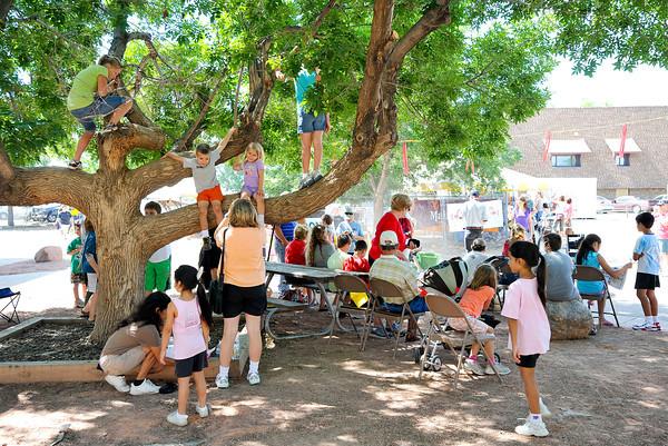 20100804_FAIR_TREE