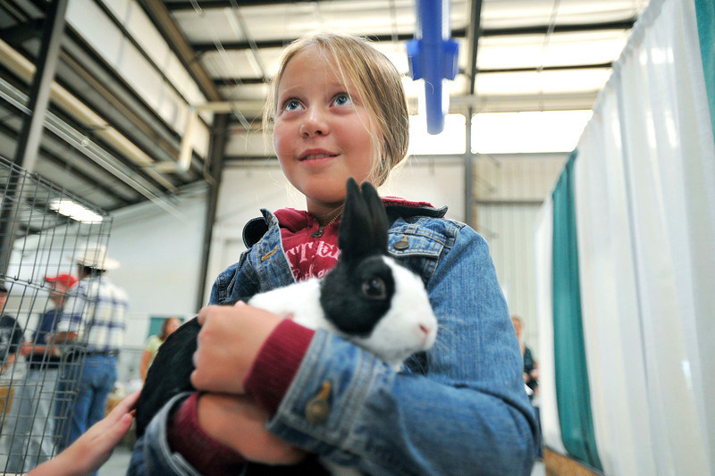 20100803_FAIR_RABBITS_3