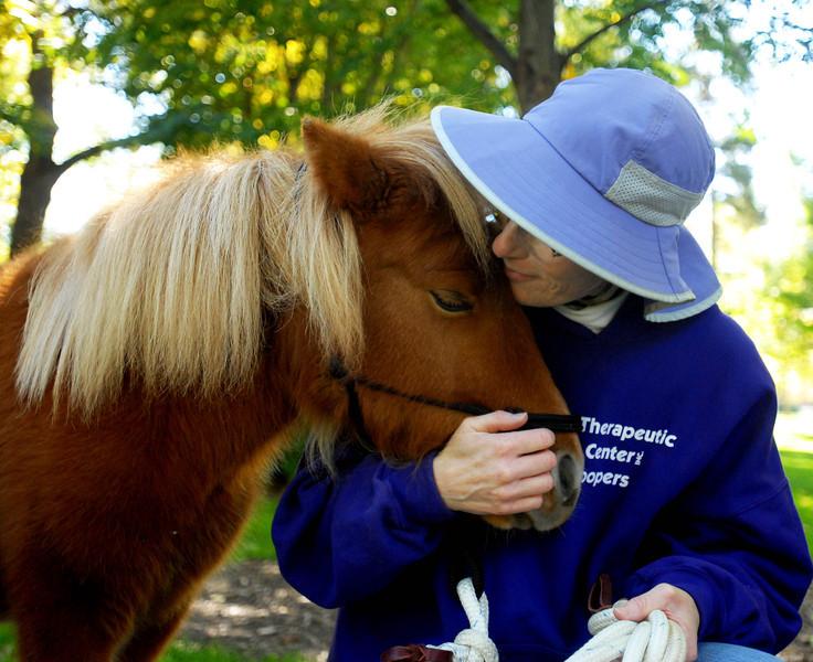 20101020_JLV_MINI_HORSE_1