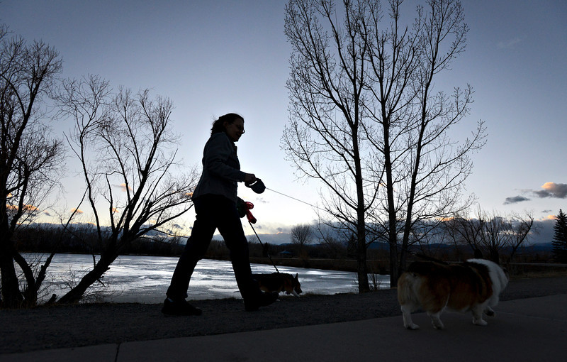 Longmont resident Carol Campbell walks with her dogs, Joey and Maggie, around Golden Ponds on Friday, Feb. 1, 2013. <br /> (Greg Lindstrom/Times-Call)