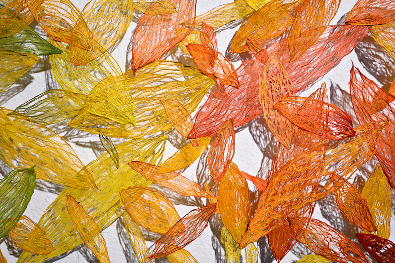 "A detail of colored kozo bark fibers in Jill Powers' ""Plants and Insects in a Time of Change,"" a new exhibit at Firehouse Art Center in Longmont on Monday, Jan. 21, 2013. <br /> (Greg Lindstrom/Times-Call)"