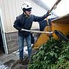 Nathan Sewolt, of A-1 Natural Arbor Care, shreds medical marijuana plants, Monday, Dec. 31, 2012, at Dacono Meds.<br /> (Matthew Jonas/Times-Call)