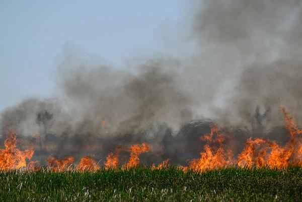 20130627_GRASS_FIRE_170