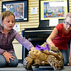 """20121121_TURTLE_076.jpg Myah Wolfe, left, 6, and her sister Trystan, 7, pet Lucy the tortoise during a book signing event at Rockley Arts in Westminster on Wednesday, Nov. 21, 2012. For more photos visit  <a href=""""http://www.TimesCall.com"""">http://www.TimesCall.com</a>.<br /> (Greg Lindstrom/Times-Call)"""